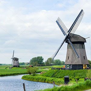Dutch Complete Course (Beginner to Advanced levels) Image