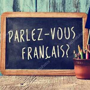 French Complete Language Course (Beginner to Advanced) Image
