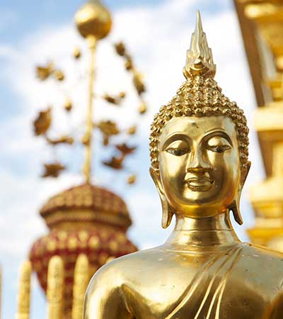 Thai Complete Course (Beginner to Advanced levels)